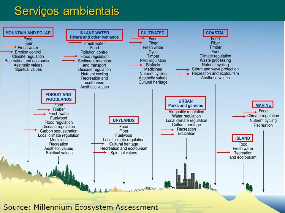 Serviços ambientais Source: Millennium Ecosystem Assessment