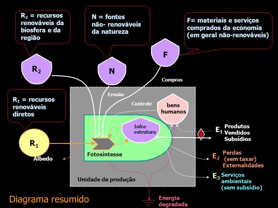 Diagrama resumido F R2 N R1 E1 E2 E3