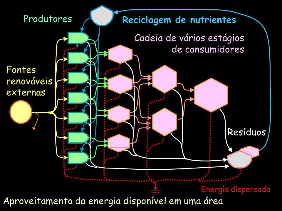 Reciclagem de nutrientes