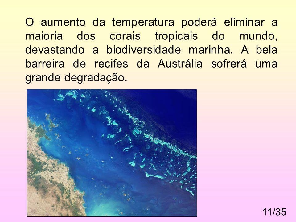 O aumento da temperatura poderá eliminar a maioria dos corais tropicais do mundo, devastando a biodiversidade marinha. A bela barreira de recifes da Austrália sofrerá uma grande degradação.