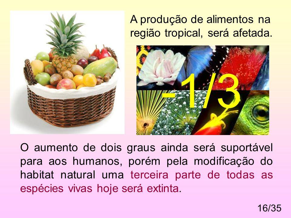 -1/3 A produção de alimentos na região tropical, será afetada.