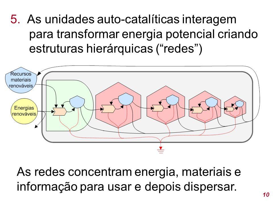 5. As unidades auto-catalíticas interagem para transformar energia potencial criando estruturas hierárquicas ( redes )