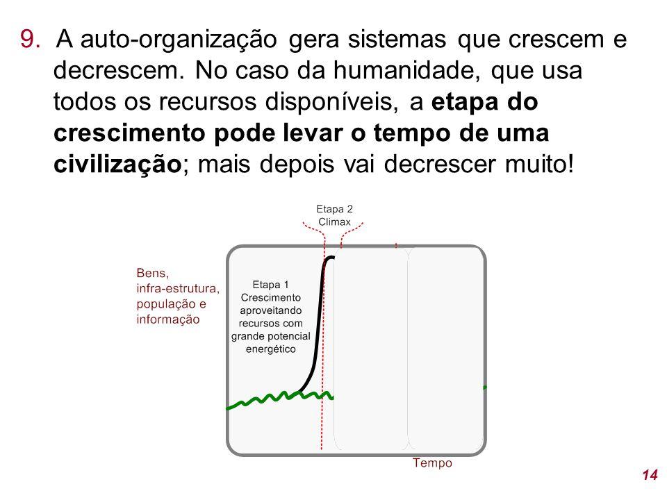 9. A auto-organização gera sistemas que crescem e decrescem