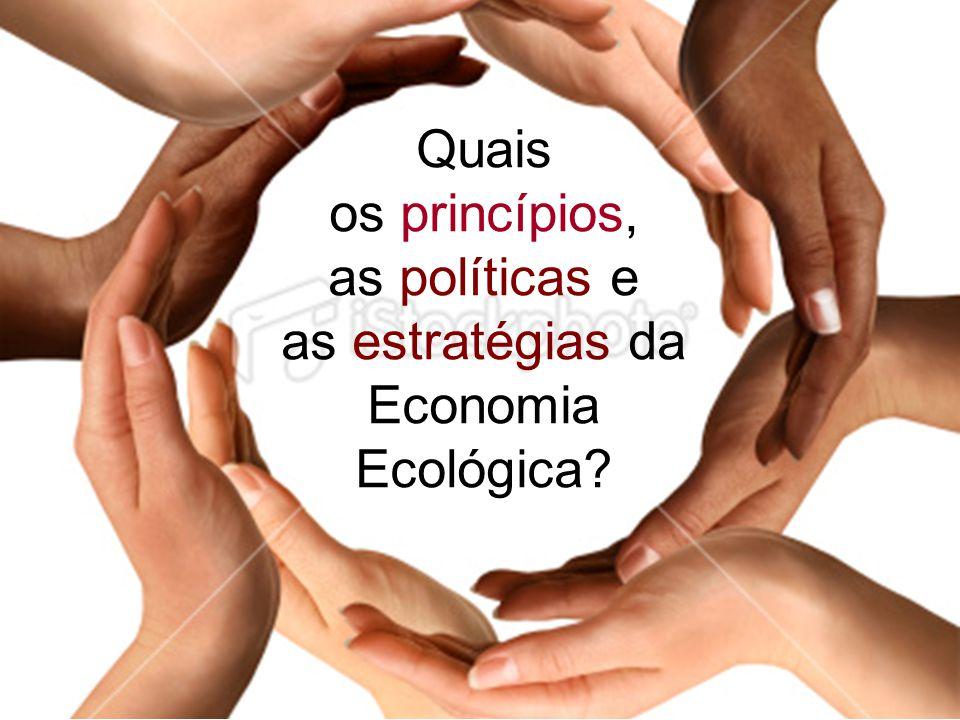 Quais os princípios, as políticas e as estratégias da Economia Ecológica