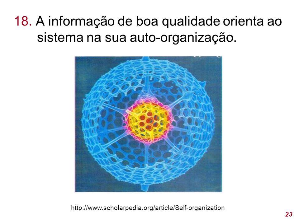 18. A informação de boa qualidade orienta ao sistema na sua auto-organização.