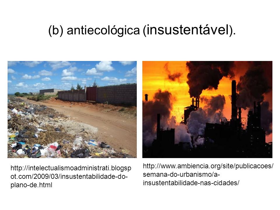 (b) antiecológica (insustentável).