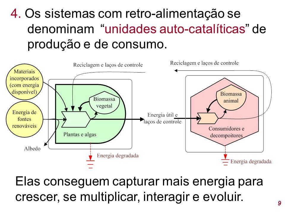 4. Os sistemas com retro-alimentação se denominam unidades auto-catalíticas de produção e de consumo.