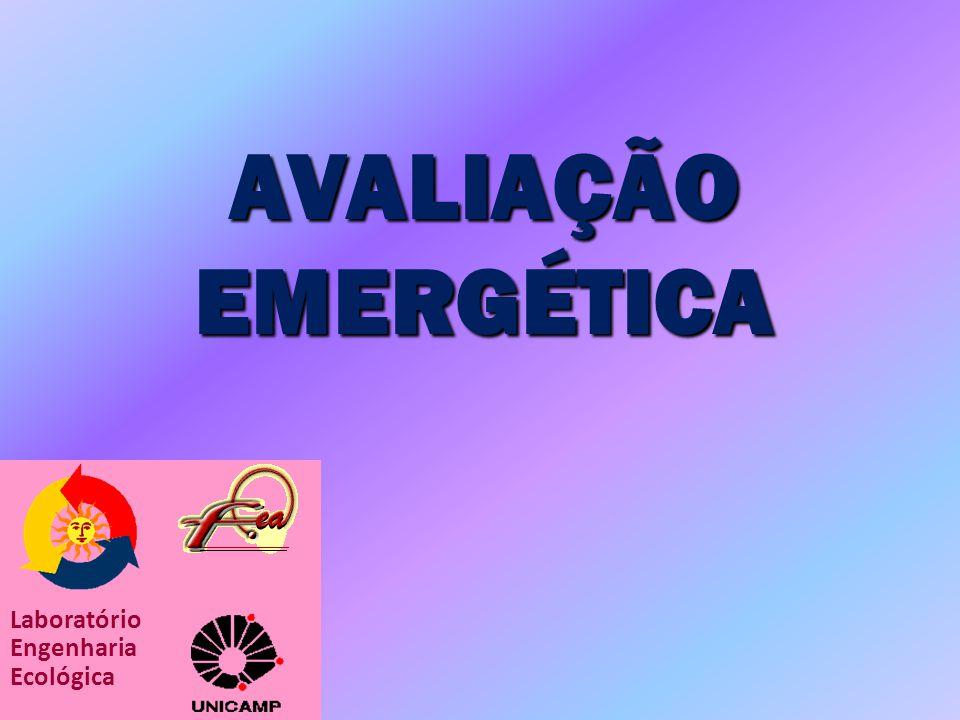 AVALIAÇÃO EMERGÉTICA Laboratório Engenharia Ecológica