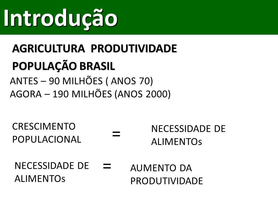Introdução = = AGRICULTURA PRODUTIVIDADE POPULAÇÃO BRASIL