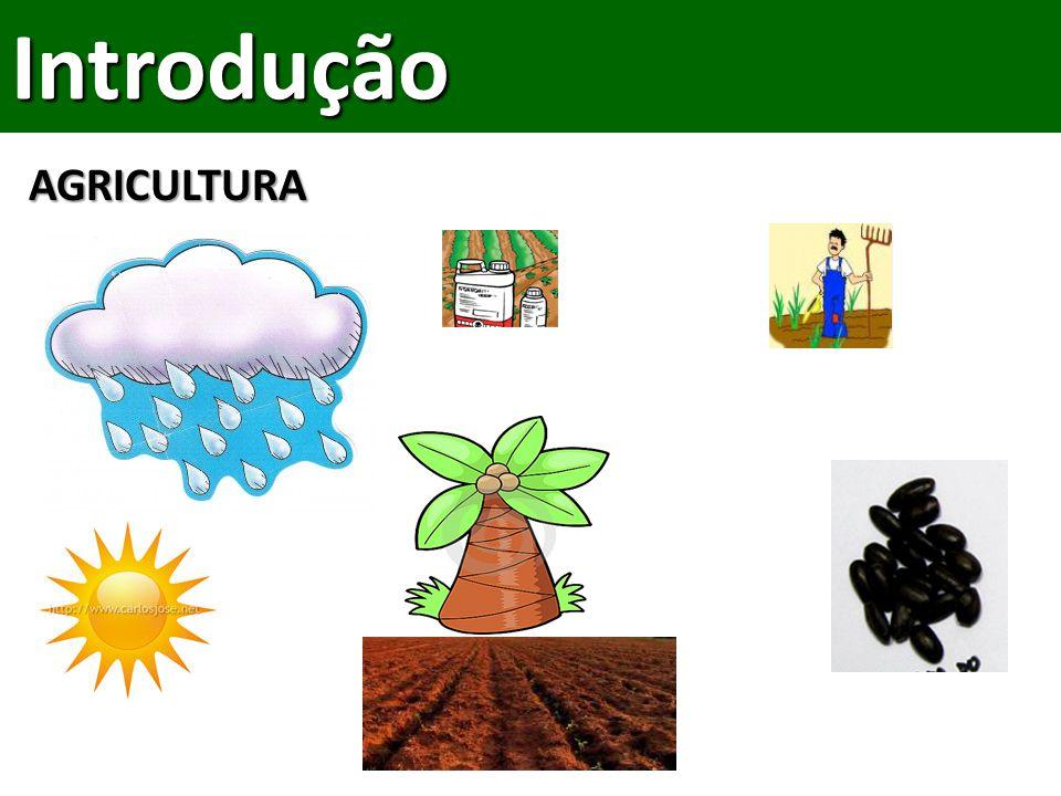 Introdução AGRICULTURA