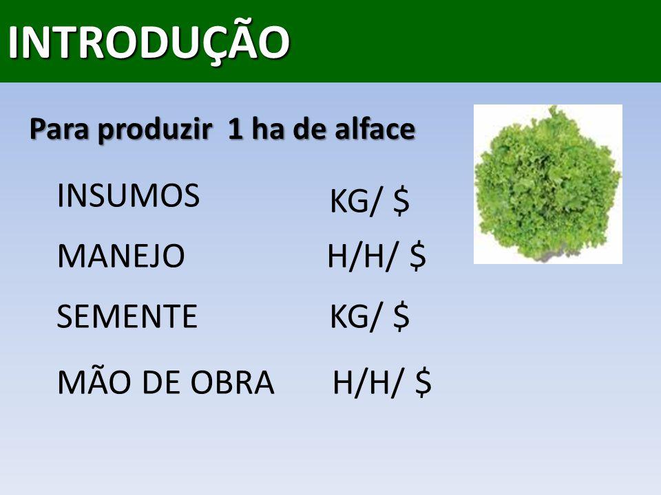 INTRODUÇÃO INSUMOS KG/ $ MANEJO H/H/ $ SEMENTE KG/ $ MÃO DE OBRA