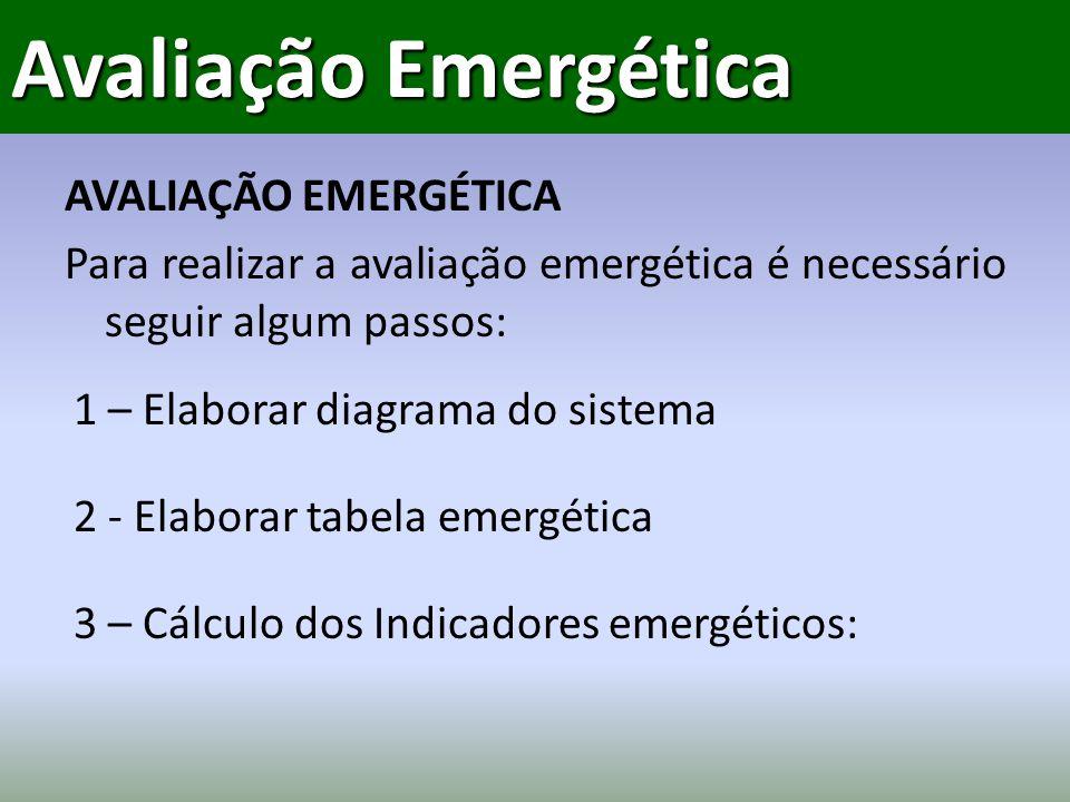 Avaliação Emergética AVALIAÇÃO EMERGÉTICA Para realizar a avaliação emergética é necessário seguir algum passos: