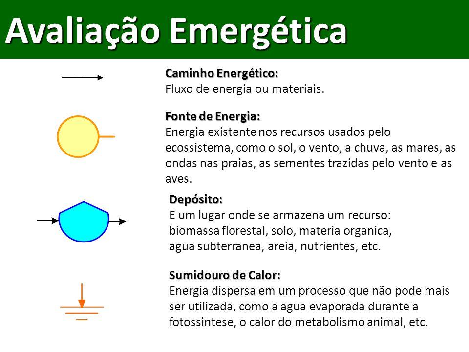 Avaliação Emergética Caminho Energético: