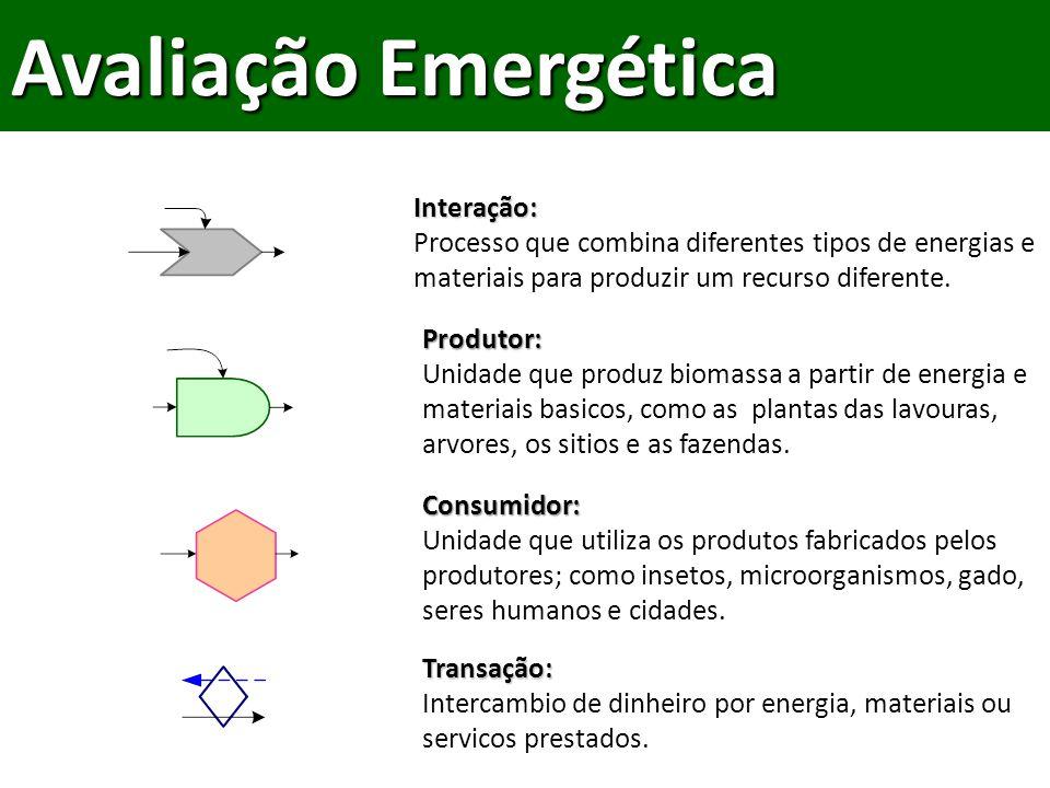 Avaliação Emergética Interação: