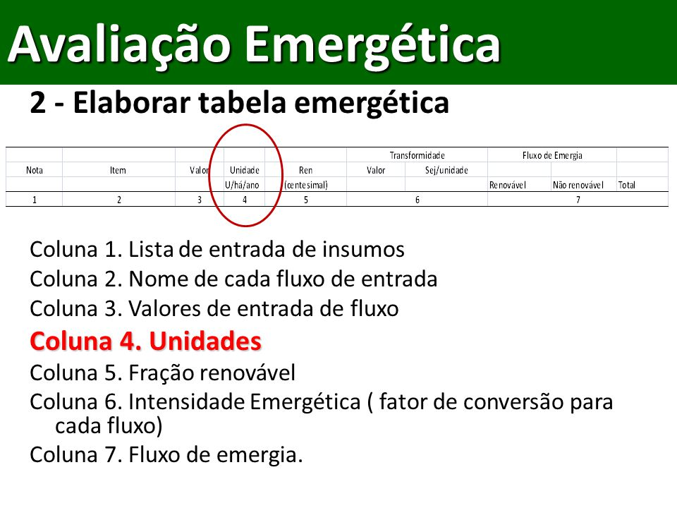 Avaliação Emergética 2 - Elaborar tabela emergética Coluna 4. Unidades
