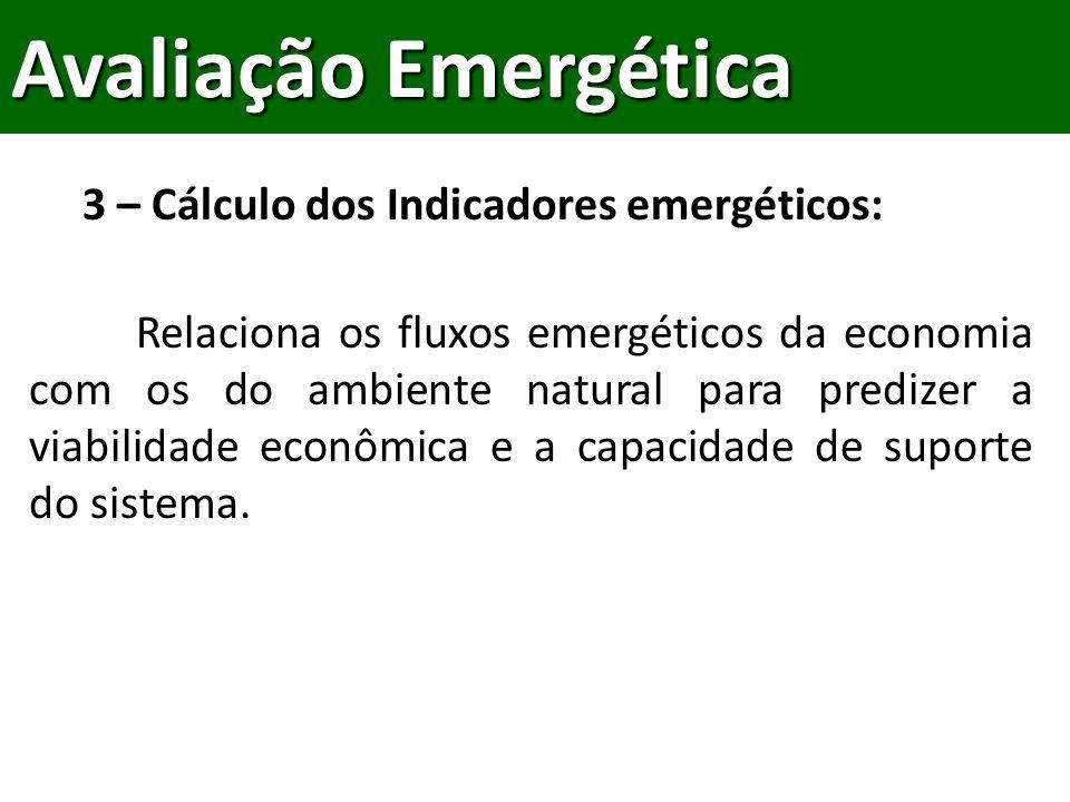 Avaliação Emergética 3 – Cálculo dos Indicadores emergéticos: