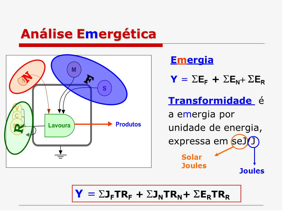 Análise Emergética N F R Y = SJFTRF + SJNTRN+ SERTRR Emergia