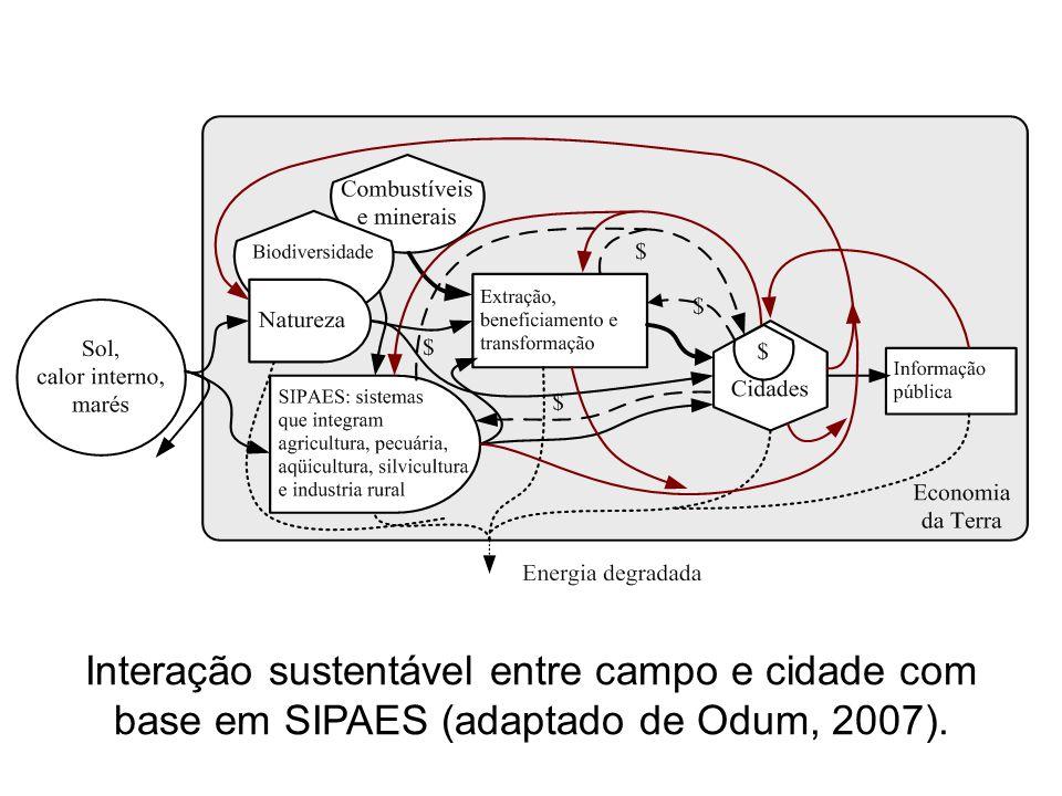 Interação sustentável entre campo e cidade com base em SIPAES (adaptado de Odum, 2007).