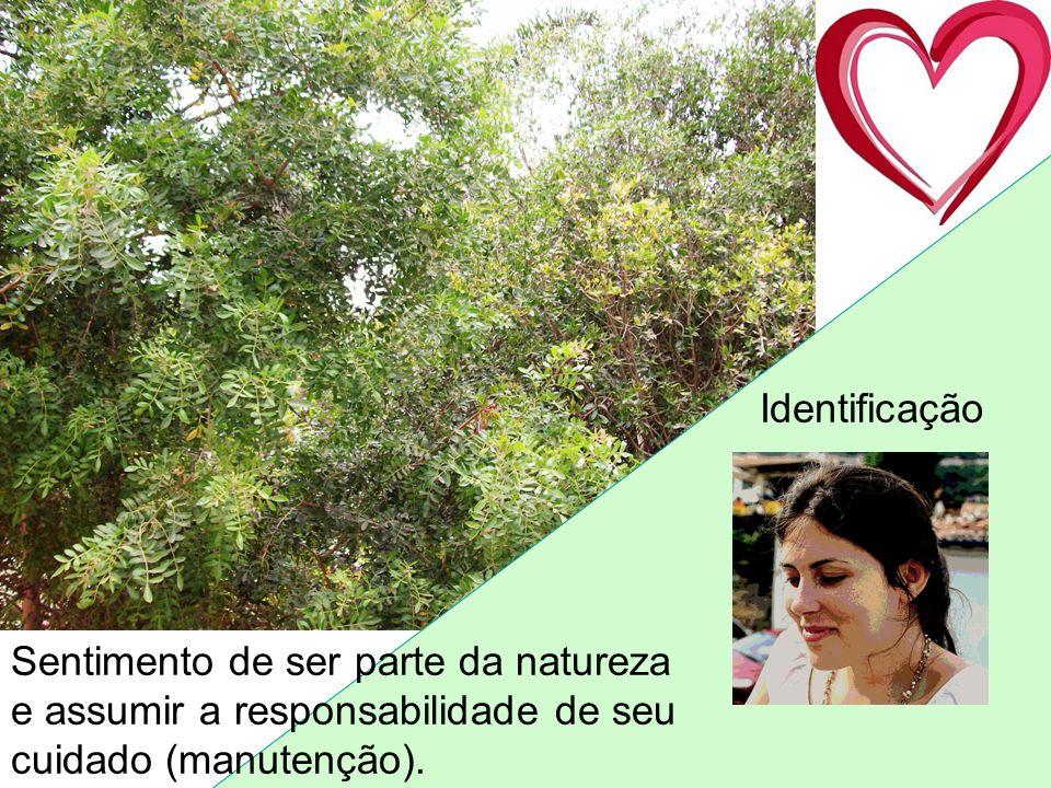 Identificação Sentimento de ser parte da natureza e assumir a responsabilidade de seu cuidado (manutenção).
