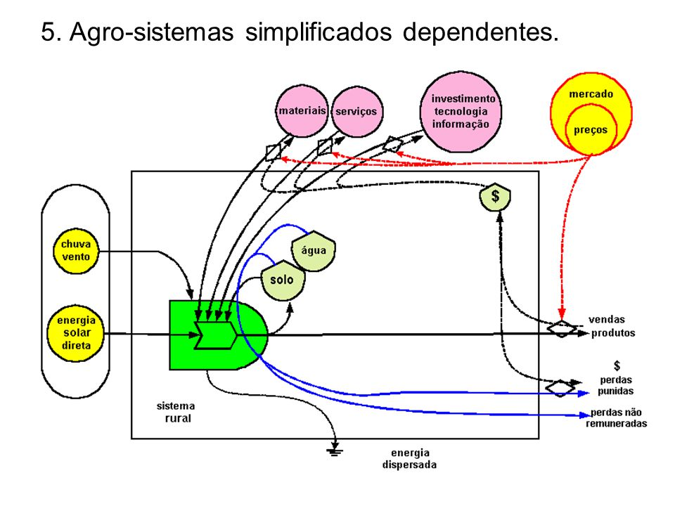 5. Agro-sistemas simplificados dependentes.