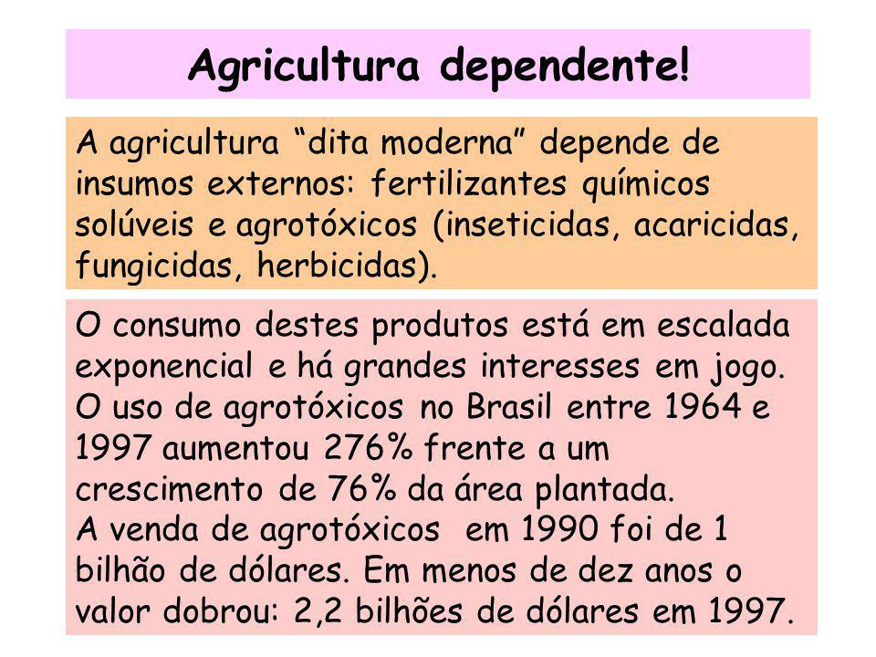 Agricultura dependente!