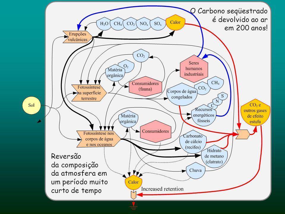 O Carbono seqüestrado é devolvido ao ar
