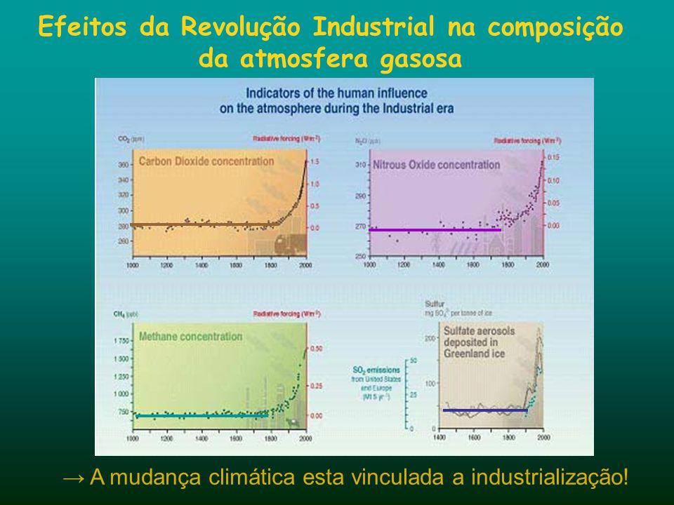 Efeitos da Revolução Industrial na composição da atmosfera gasosa