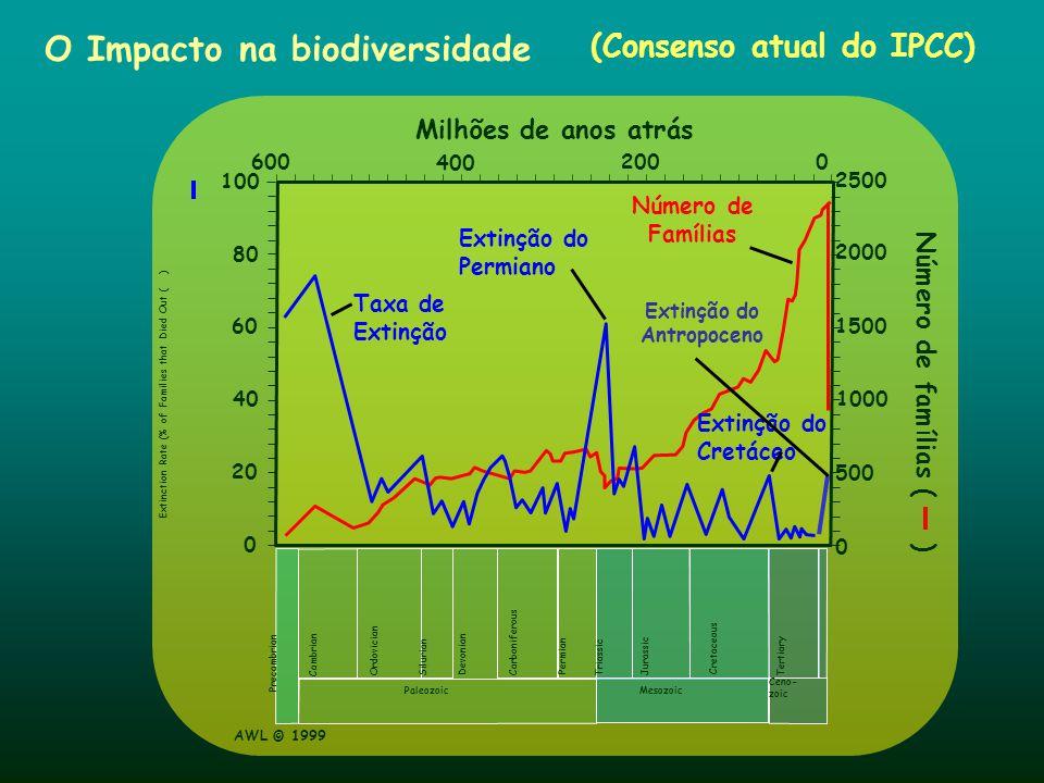 O Impacto na biodiversidade