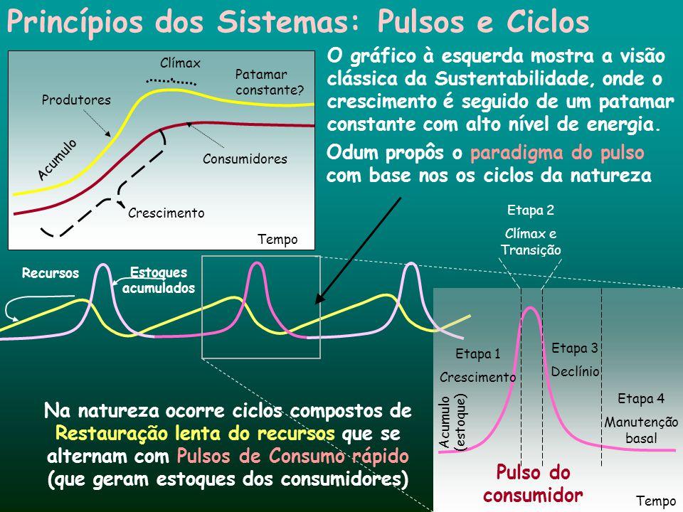 Princípios dos Sistemas: Pulsos e Ciclos