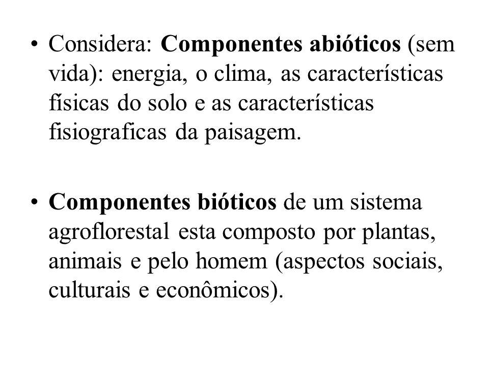Considera: Componentes abióticos (sem vida): energia, o clima, as características físicas do solo e as características fisiograficas da paisagem.
