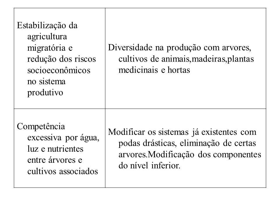 Estabilização da agricultura migratória e redução dos riscos socioeconômicos no sistema produtivo