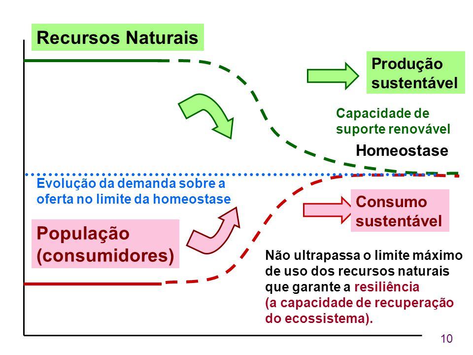 Recursos Naturais População (consumidores) Produção sustentável