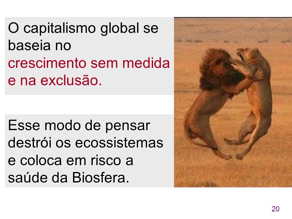O capitalismo global se baseia no crescimento sem medida e na exclusão.