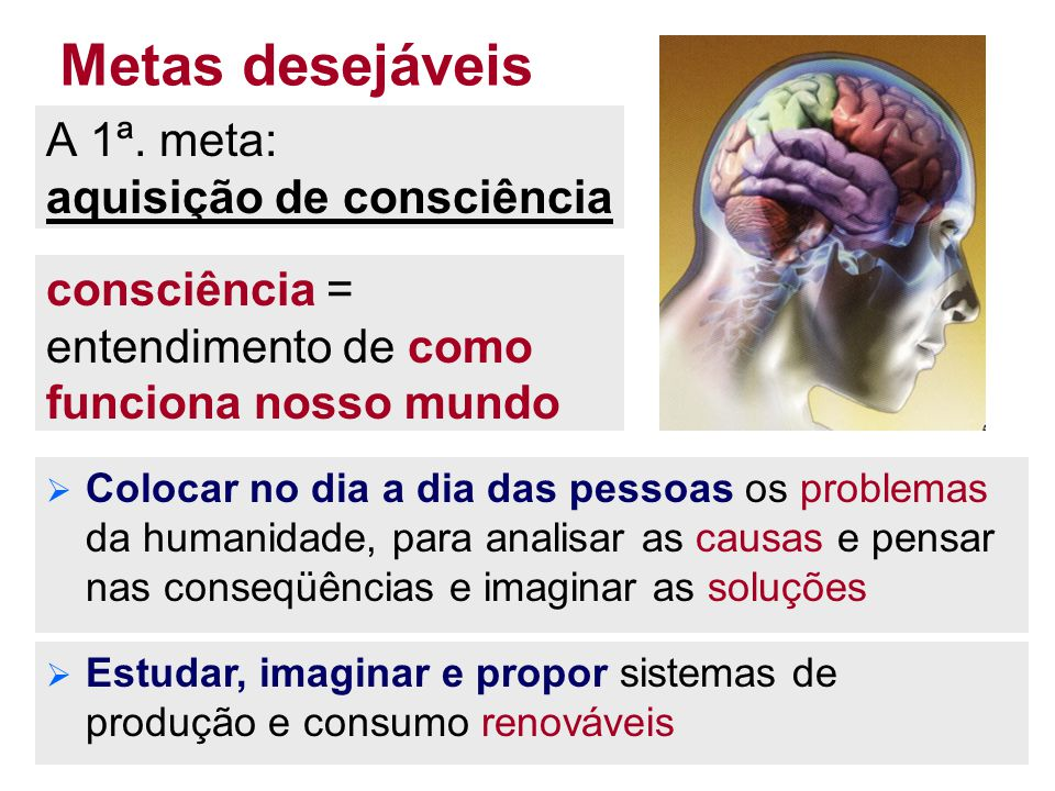 Metas desejáveis A 1ª. meta: aquisição de consciência