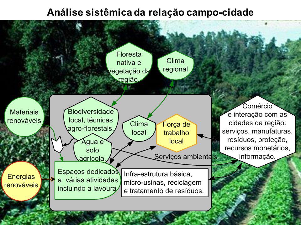 Análise sistêmica da relação campo-cidade