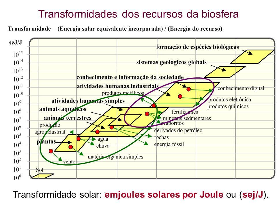 Transformidades dos recursos da biosfera