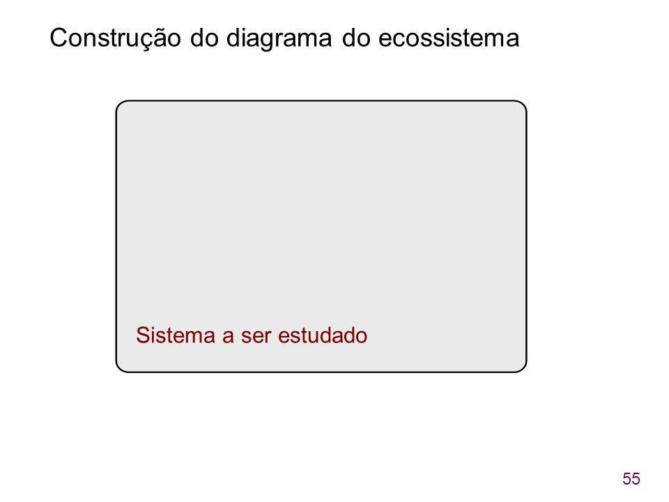 Construção do diagrama do ecossistema