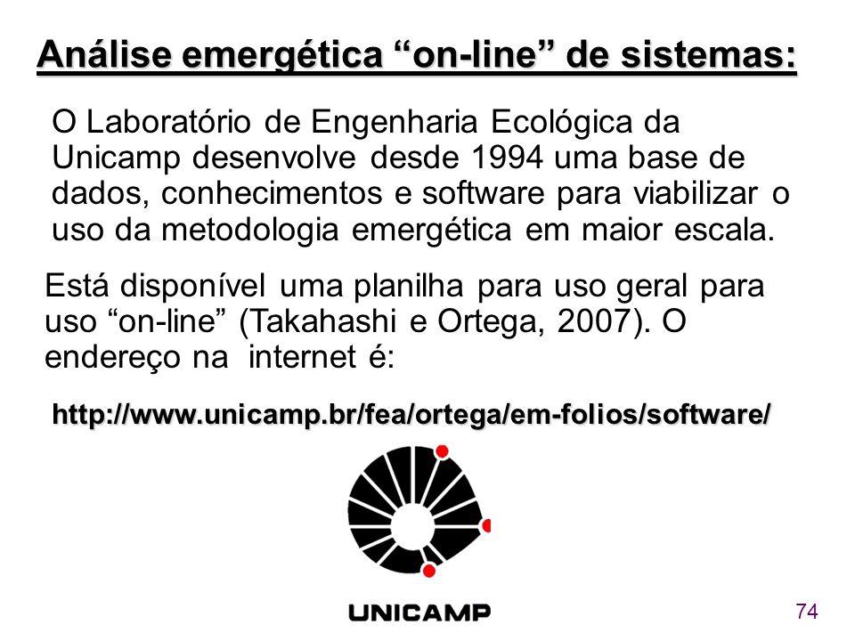 Análise emergética on-line de sistemas: