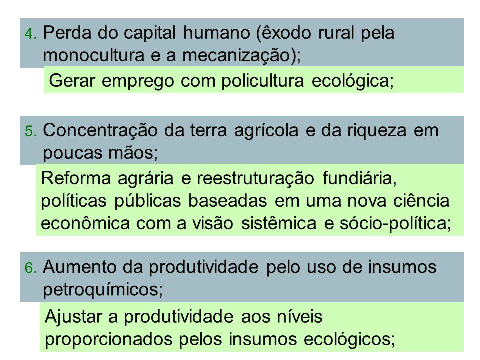 Perda do capital humano (êxodo rural pela monocultura e a mecanização);