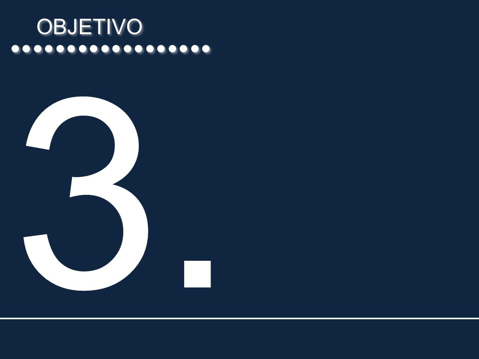 OBJETIVO 3.