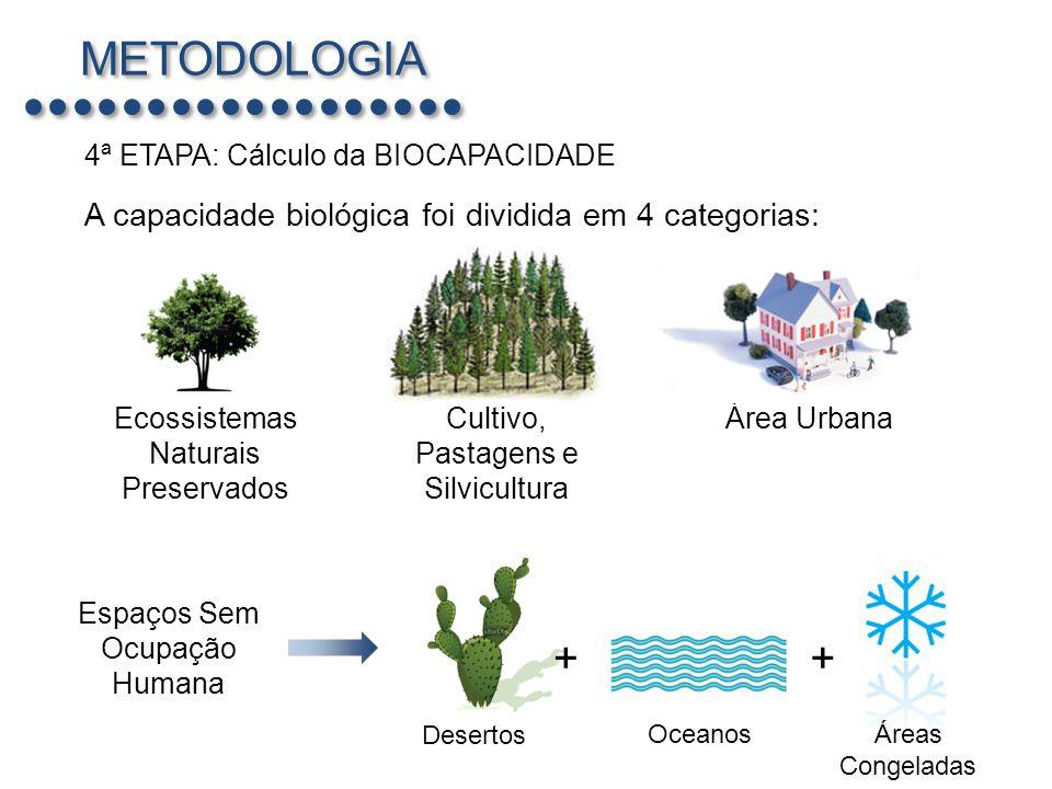 METODOLOGIA + + A capacidade biológica foi dividida em 4 categorias: