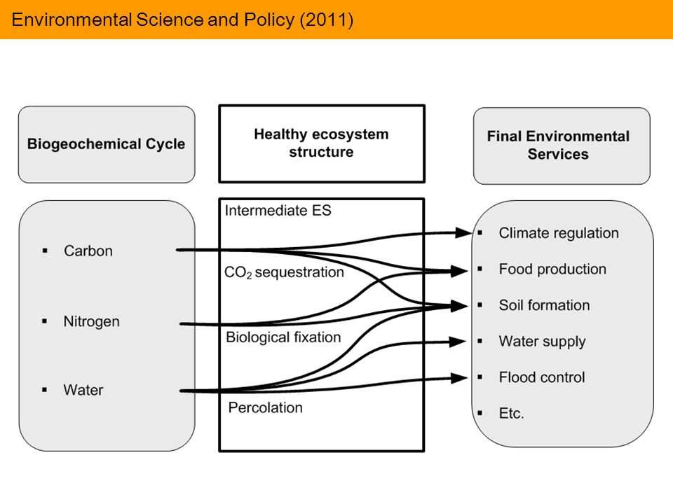 Environmental Science and Policy (2011)
