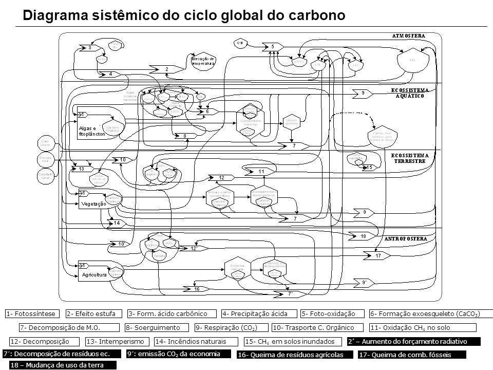 Diagrama sistêmico do ciclo global do carbono