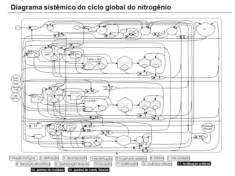 Diagrama sistêmico do ciclo global do nitrogênio
