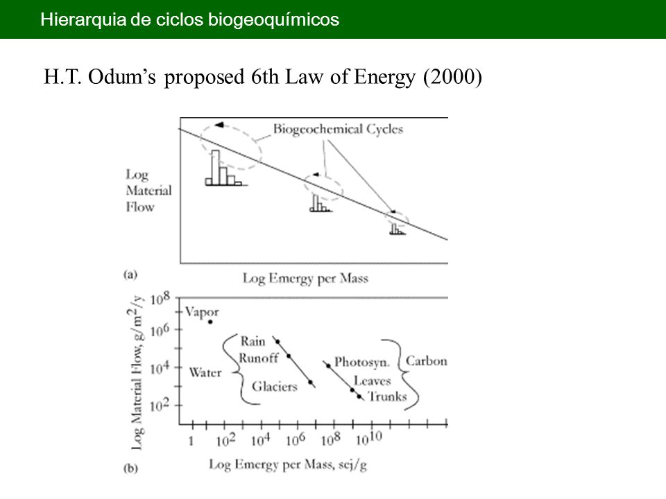 H.T. Odum's proposed 6th Law of Energy (2000)