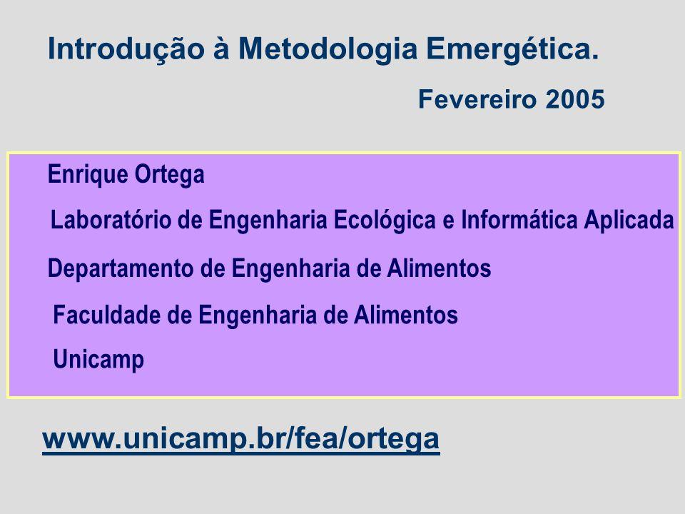 Introdução à Metodologia Emergética.