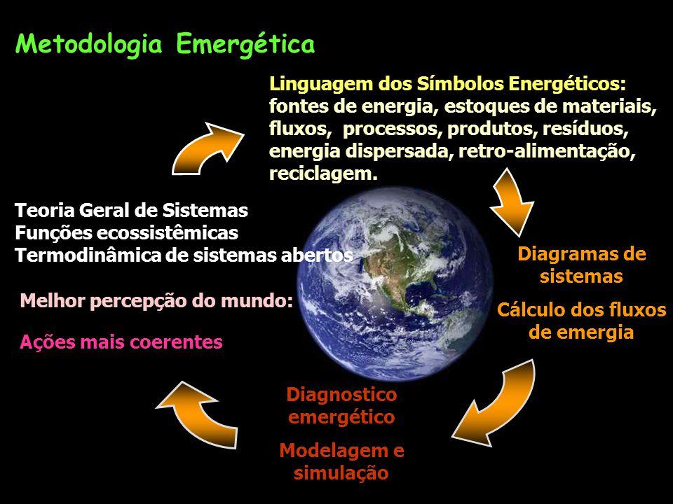 Cálculo dos fluxos de emergia Diagnostico emergético