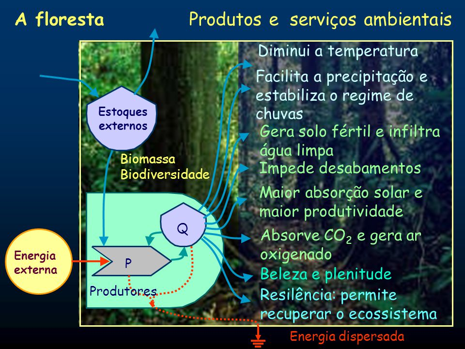 Produtos e serviços ambientais
