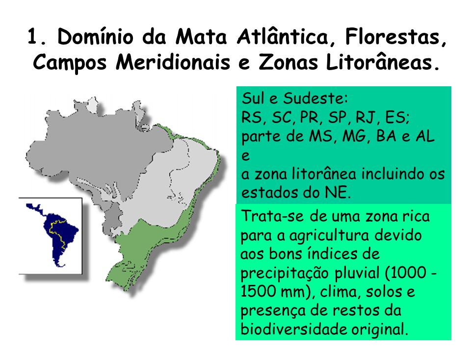 1. Domínio da Mata Atlântica, Florestas, Campos Meridionais e Zonas Litorâneas.