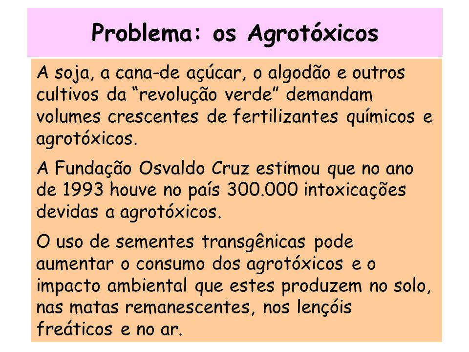Problema: os Agrotóxicos